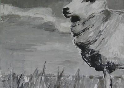 Schaf Berta | 120x120cm